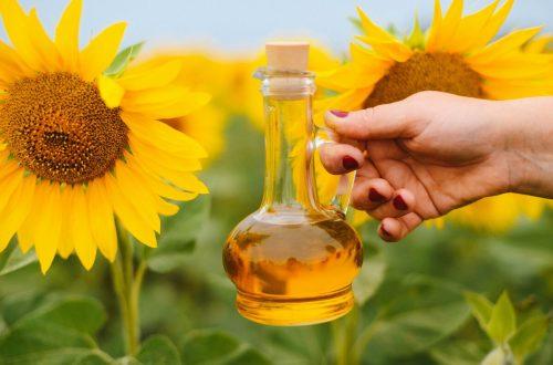 Польза подсолнечного масла для организма человека